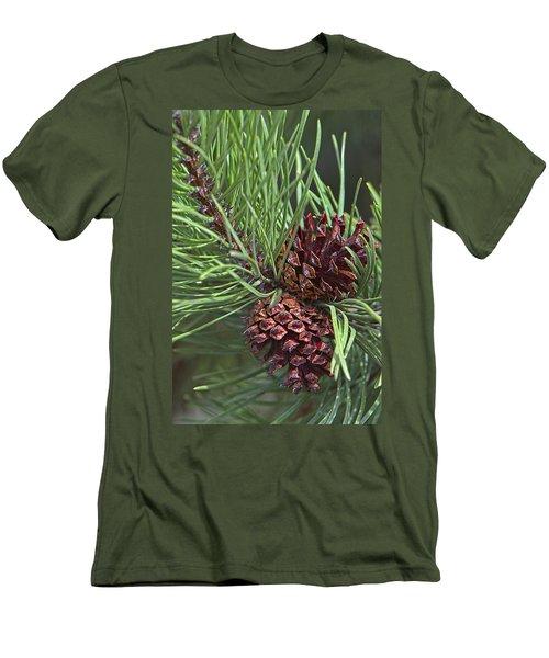 Ponderosa Pine Cones Men's T-Shirt (Athletic Fit)