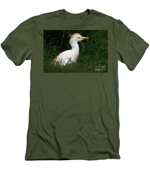 Portrait Of A White Egret Men's T-Shirt (Athletic Fit)