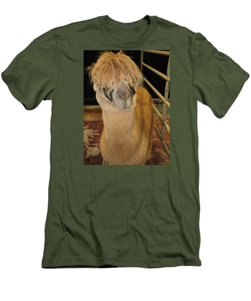 Portrait Of An Alpaca Men's T-Shirt (Slim Fit) by Connie Fox