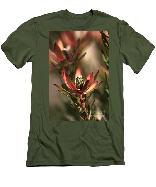 Protea  Men's T-Shirt (Slim Fit) by Joy Watson