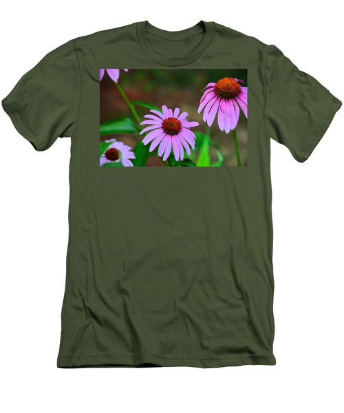 Purple Coneflower - Echinacea Men's T-Shirt (Athletic Fit)