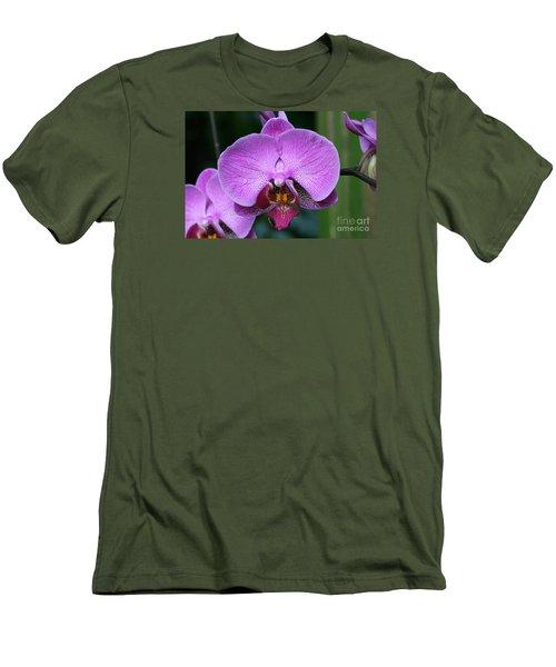 Purple Phalaenopsis Orchids Men's T-Shirt (Athletic Fit)