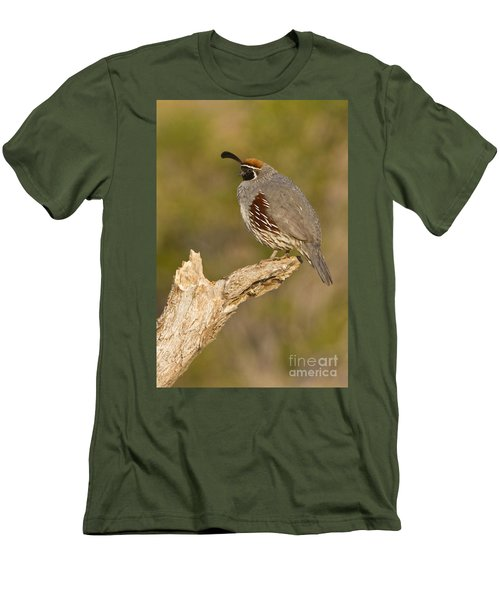 Men's T-Shirt (Slim Fit) featuring the photograph Quail On A Stick by Bryan Keil