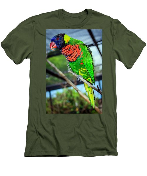 Men's T-Shirt (Slim Fit) featuring the photograph Rainbow Lory by Sennie Pierson