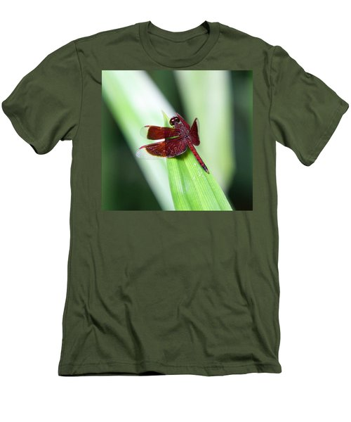 Men's T-Shirt (Slim Fit) featuring the photograph Red Dragon by Shoal Hollingsworth