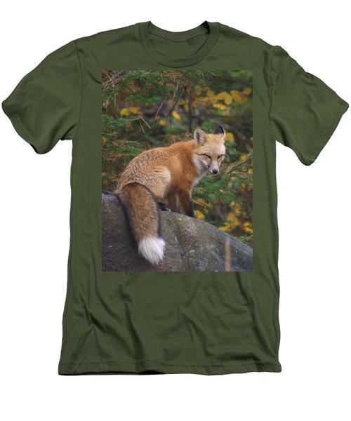 Men's T-Shirt (Slim Fit) featuring the photograph Red Fox by James Peterson