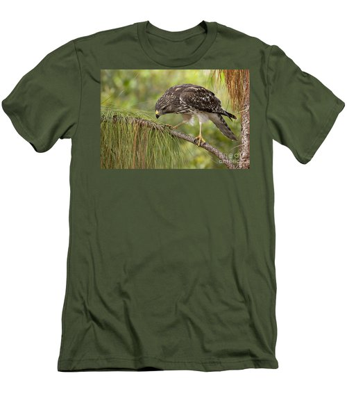 Red Shouldered Hawk Photo Men's T-Shirt (Athletic Fit)