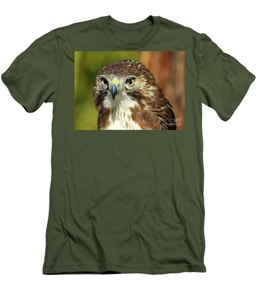 Red Tailed Hawk Men's T-Shirt (Athletic Fit)