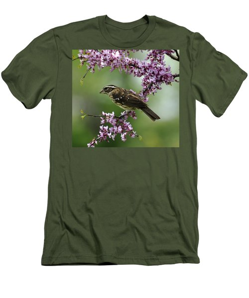 Redbud With Grosbeak Men's T-Shirt (Athletic Fit)