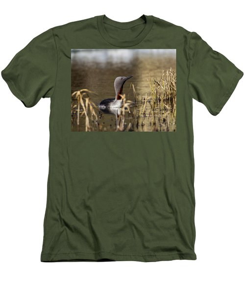 Redthroated Loon Men's T-Shirt (Athletic Fit)