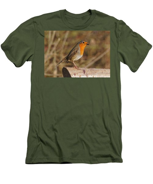 Robin On A Log -2 Men's T-Shirt (Athletic Fit)