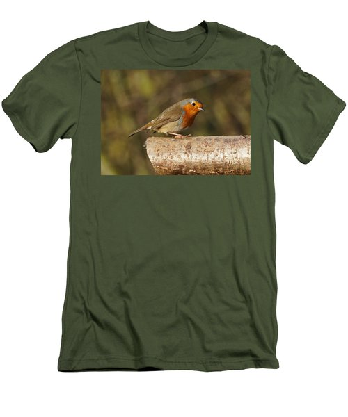 Robin On A Log Men's T-Shirt (Athletic Fit)