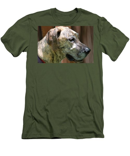 Men's T-Shirt (Slim Fit) featuring the photograph Sammy by Aimee L Maher Photography and Art Visit ALMGallerydotcom