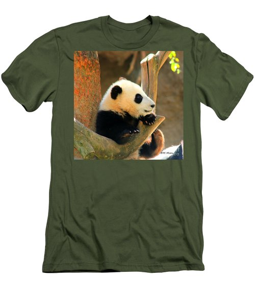 San Diego Zoo Panda Bear Xiao Liwu Men's T-Shirt (Athletic Fit)
