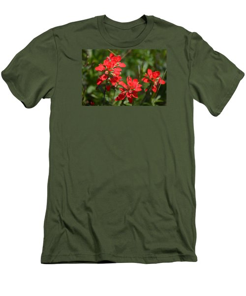 Scarlet Paintbrush. Texas Wildflowers. Castilleja_indivisa Men's T-Shirt (Athletic Fit)