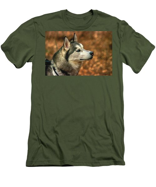 Siberian Husky Men's T-Shirt (Athletic Fit)
