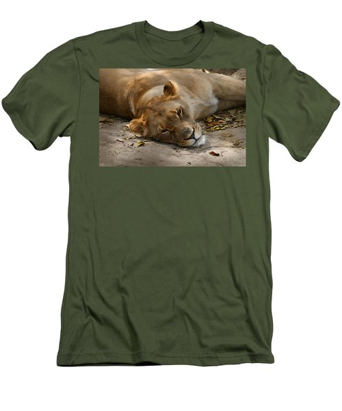 Men's T-Shirt (Slim Fit) featuring the photograph Sleepy Lioness by Ann Lauwers