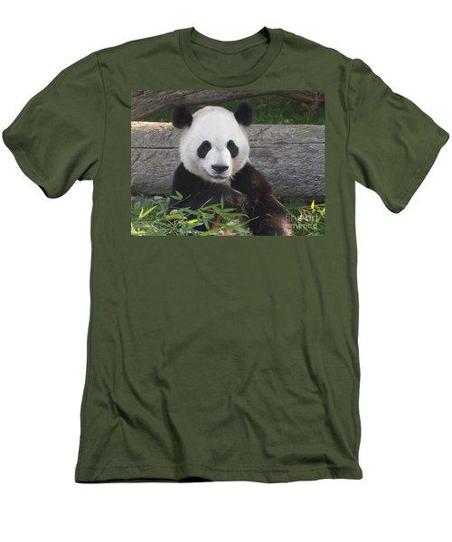 Smiling Giant Panda Men's T-Shirt (Slim Fit) by Lingfai Leung