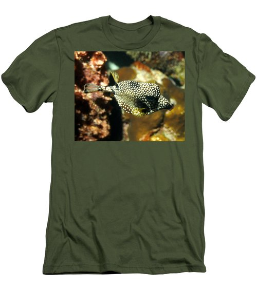 Smooth Trunkfish Men's T-Shirt (Slim Fit) by Amy McDaniel