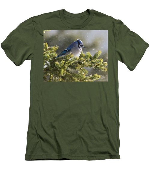 Snowy Day Blue Jay Men's T-Shirt (Athletic Fit)