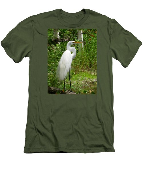 Snowy Egret Men's T-Shirt (Slim Fit) by Melinda Saminski