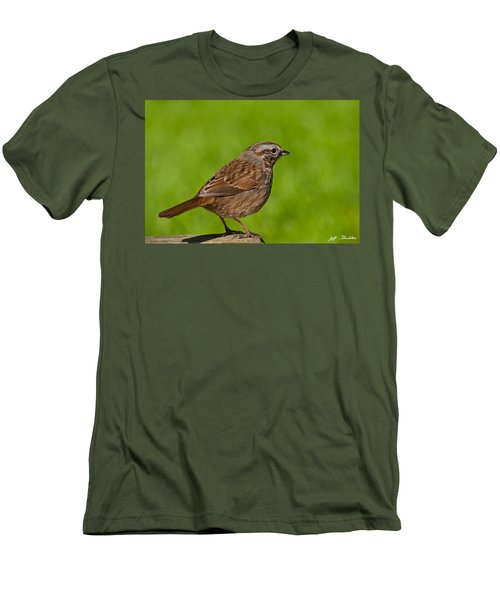 Song Sparrow On A Log Men's T-Shirt (Athletic Fit)