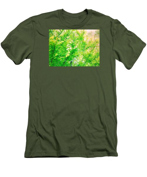 Spring Cypress Beauty Men's T-Shirt (Athletic Fit)