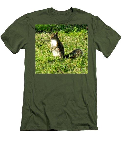 Squirrel Men's T-Shirt (Slim Fit) by Oksana Semenchenko