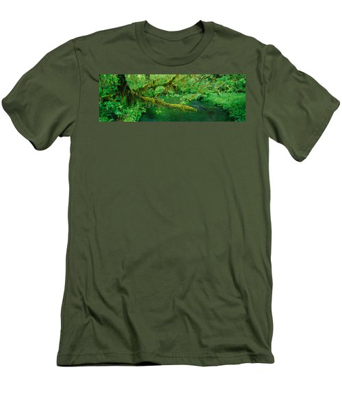 Stream Flowing Through A Rainforest Men's T-Shirt (Athletic Fit)