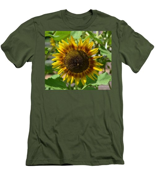Sunflower Glory Men's T-Shirt (Slim Fit) by Luther Fine Art