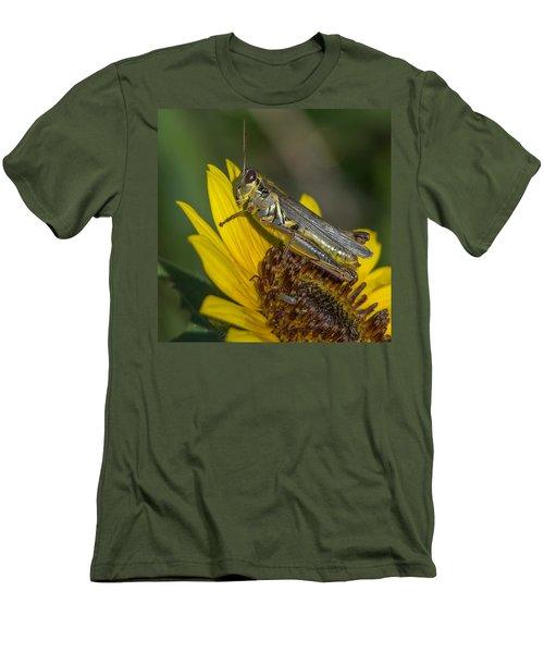 Sunflower Love Men's T-Shirt (Athletic Fit)