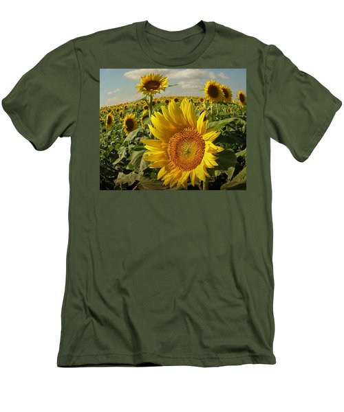 Kansas Sunflowers Men's T-Shirt (Slim Fit) by Chris Berry