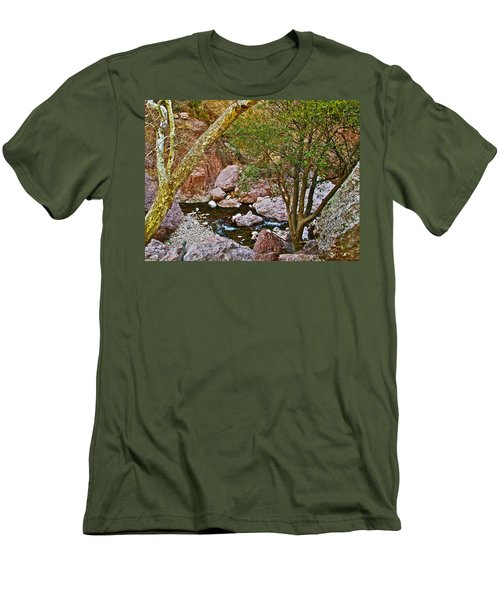 Sycamore And Cottonwood In Whitewater Catwalk National Recreation Trail Near Glenwood-new Mexico  Men's T-Shirt (Slim Fit) by Ruth Hager