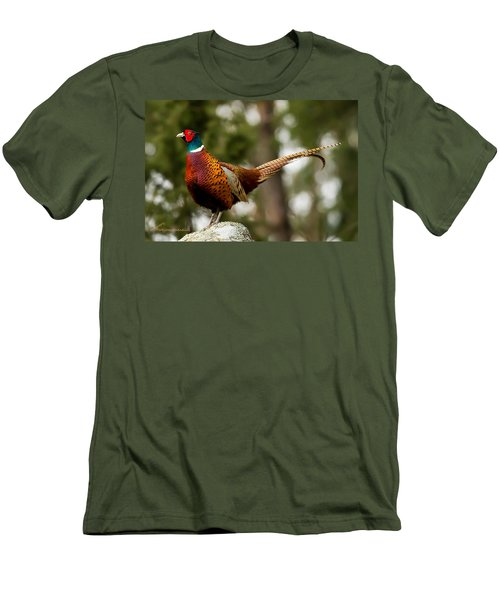 The Cock On Top Of The Rock Men's T-Shirt (Slim Fit) by Torbjorn Swenelius