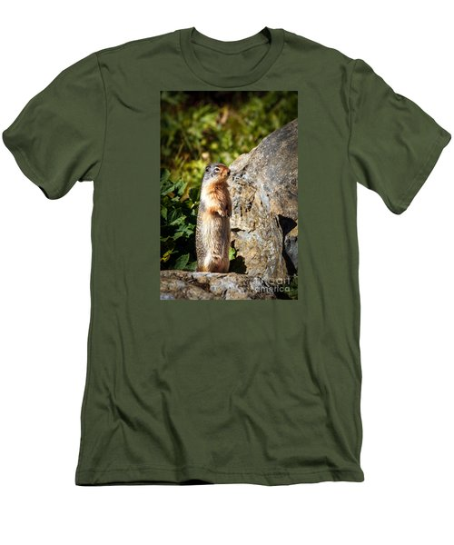 The Marmot Men's T-Shirt (Slim Fit) by Robert Bales