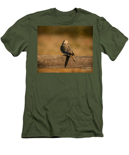 The Morning Dove Men's T-Shirt (Slim Fit) by Robert Frederick