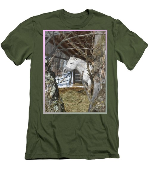 The Paso Fino Stallion At Home Men's T-Shirt (Athletic Fit)