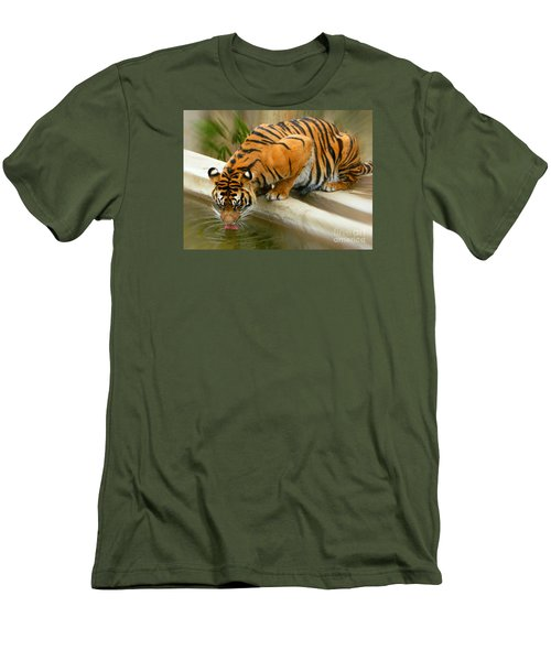 Thirsty Sumatran Tiger Men's T-Shirt (Slim Fit) by Emmy Marie Vickers