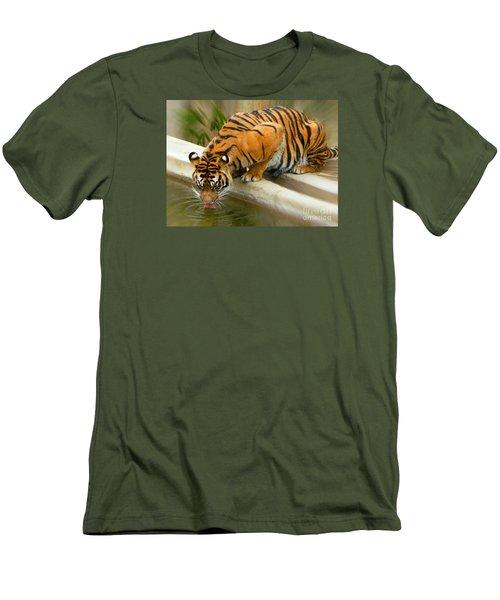 Thirsty Sumatran Tiger Men's T-Shirt (Athletic Fit)
