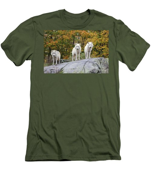 Three Looking At Me Men's T-Shirt (Athletic Fit)