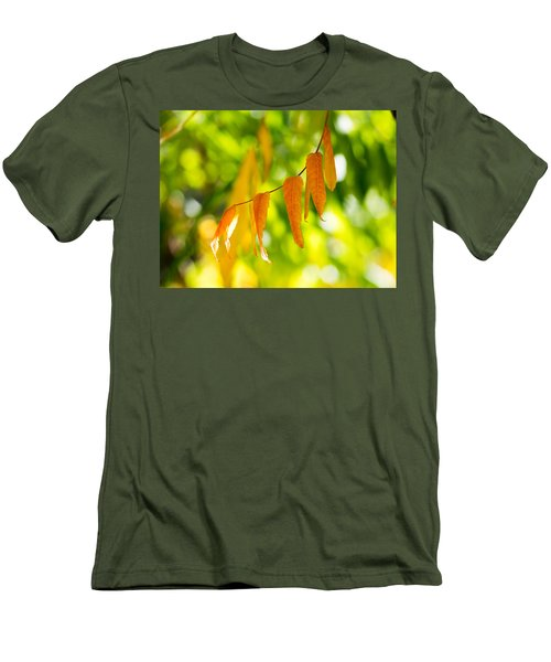 Turning Autumn Men's T-Shirt (Slim Fit) by Aaron Aldrich