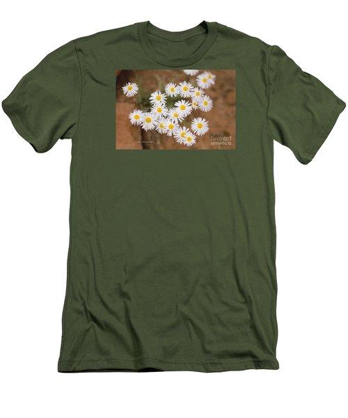 Unidentified Daisy Men's T-Shirt (Athletic Fit)