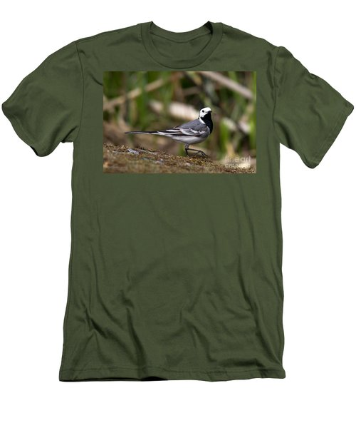 Wagtail's Step Men's T-Shirt (Slim Fit) by Torbjorn Swenelius
