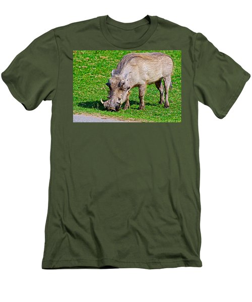 Warthog In Addo Elephant Park Near Port Elizabeth-south Africa  Men's T-Shirt (Athletic Fit)