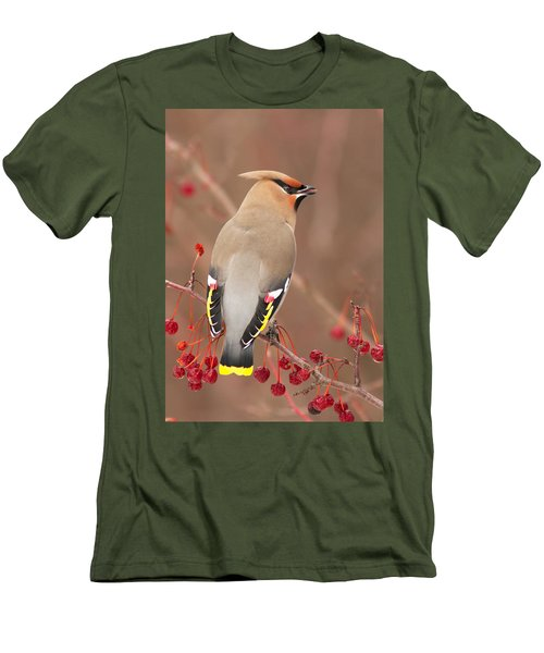 Waxwing In Winter Men's T-Shirt (Athletic Fit)