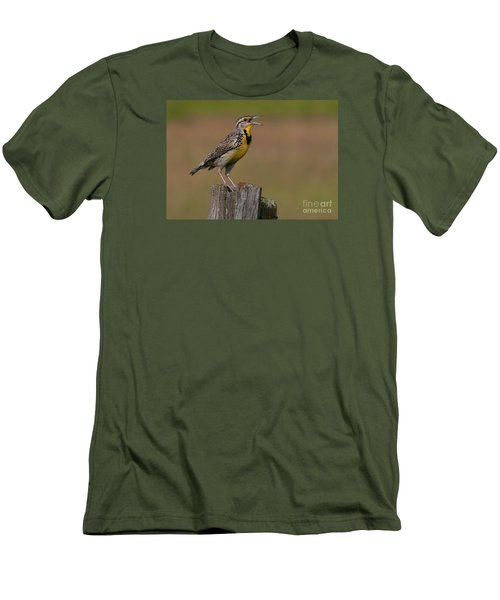 Western Meadowlark.. Men's T-Shirt (Slim Fit) by Nina Stavlund