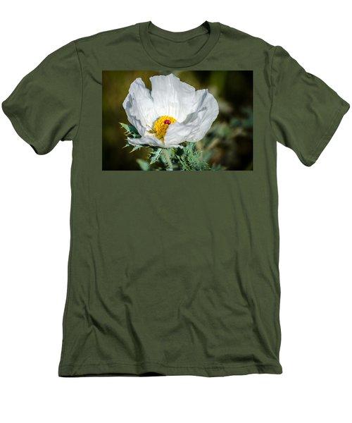 White Prickly Poppy Wildflower Men's T-Shirt (Slim Fit) by Debra Martz
