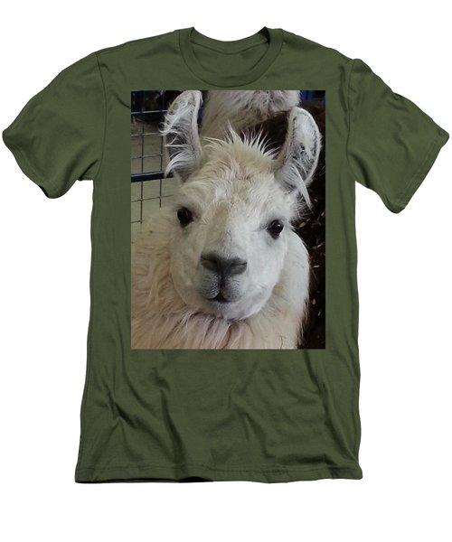 Men's T-Shirt (Slim Fit) featuring the photograph Who Me Llama by Caryl J Bohn