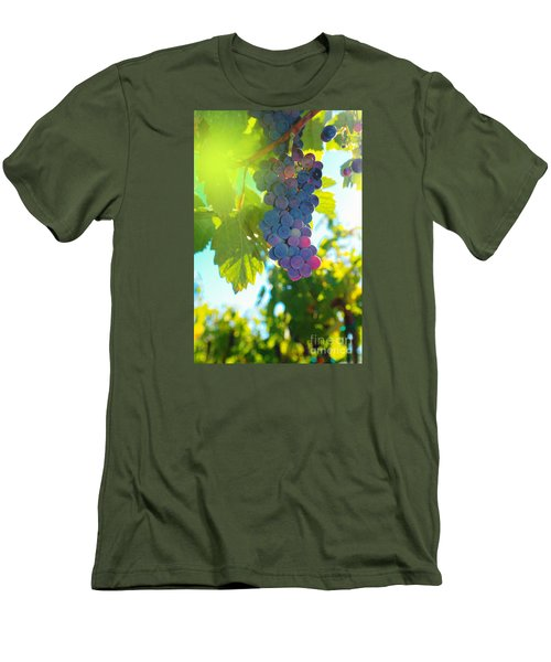Wine Grapes  Men's T-Shirt (Slim Fit) by Jeff Swan