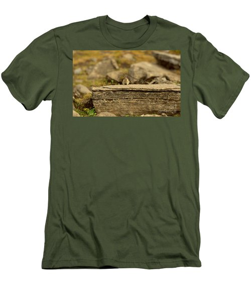 Woodland Critter Men's T-Shirt (Athletic Fit)